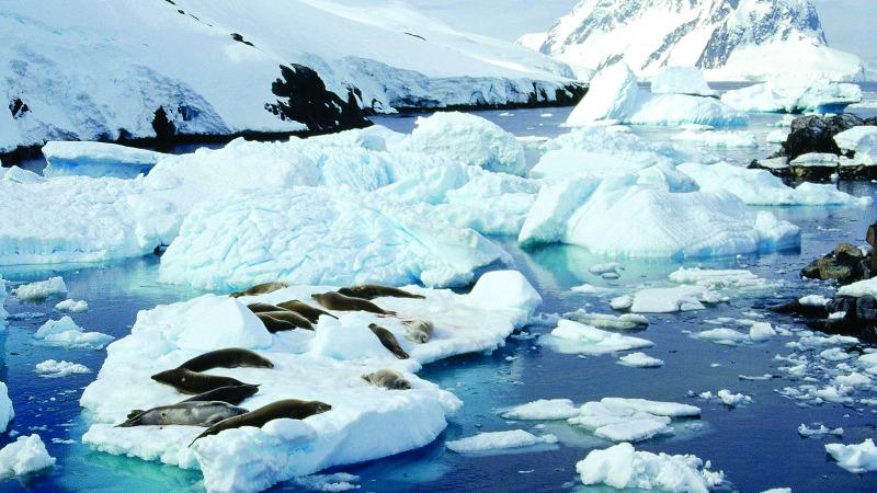 全球变暖该二氧化碳负责吗?科学家如何看待的头图