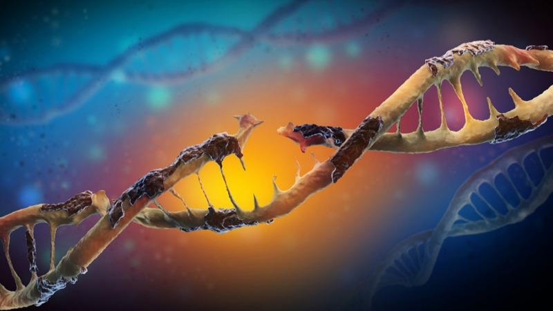 人类是否会因遗传负荷而灭绝?的头图