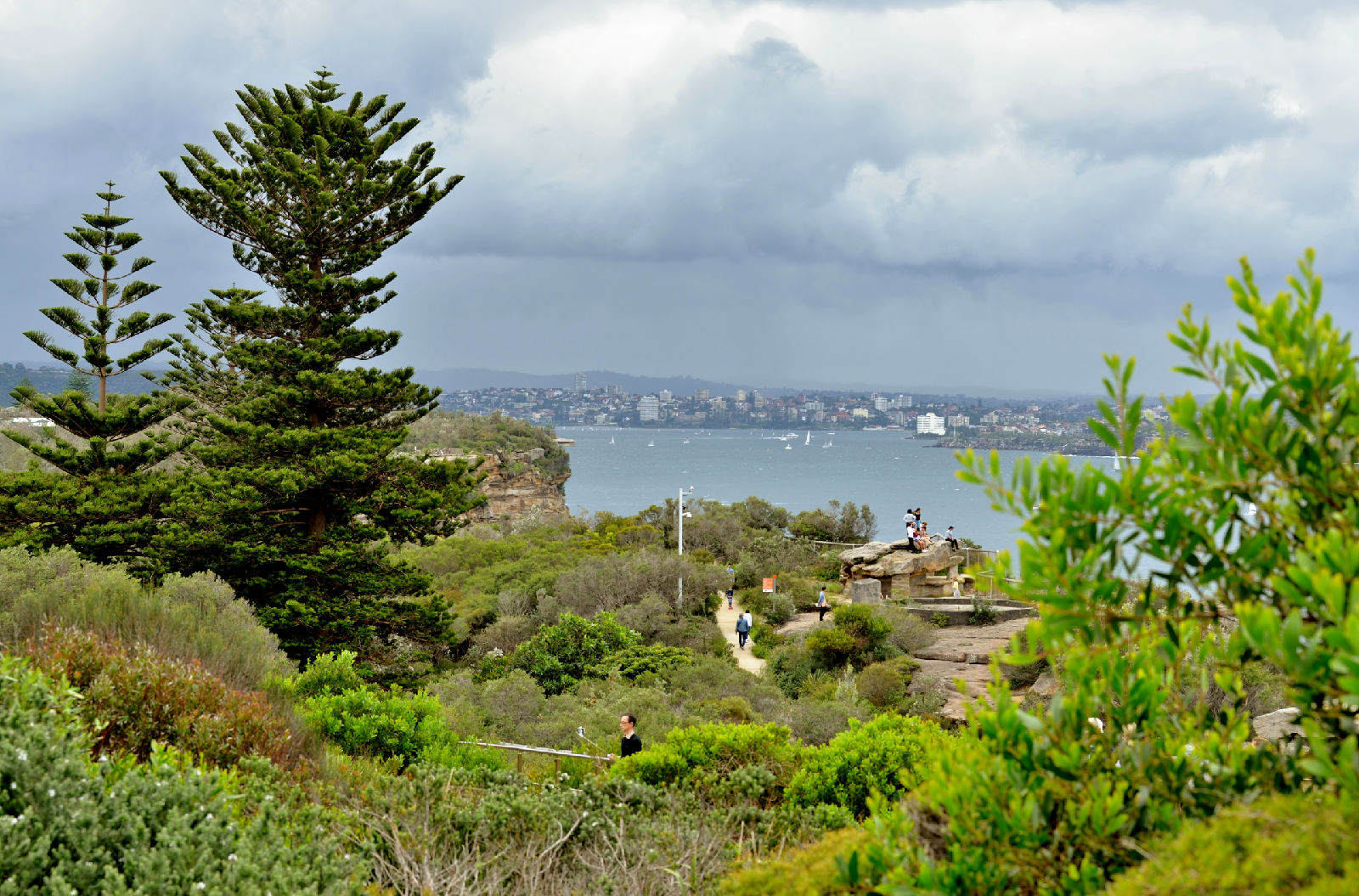 澳大利亚旅游攻略图片330