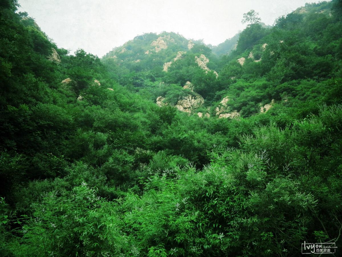 梨木台旅游攻略图片7
