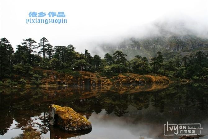 丽江老君山旅游攻略图片5