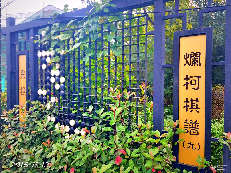 衢州旅游攻略图片164