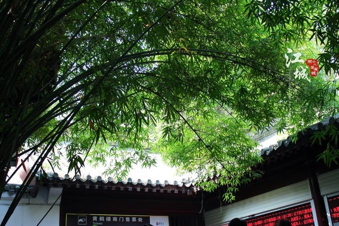 武汉旅游攻略图片120