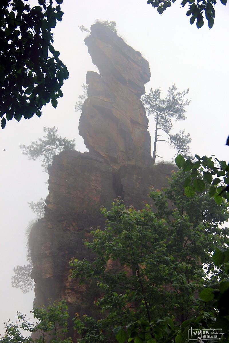 张家界国家森林公园旅游攻略图片28