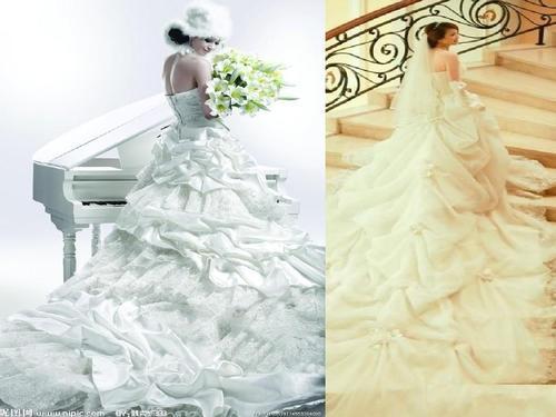 所有婚纱种类_所有蜂的种类图片大全