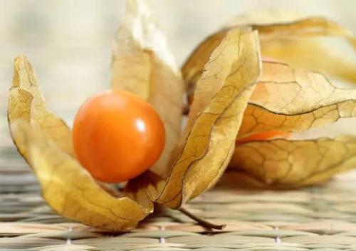 花姑娘水果图片_花姑娘水果有哪些营养_百度知道