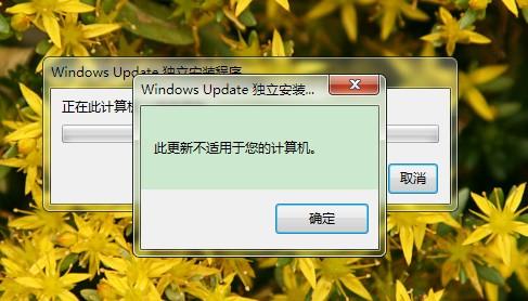 我想装IE10 但是KB2533623打不了老是说此更新不适用您的计算机