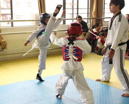 跆拳道基本功图片
