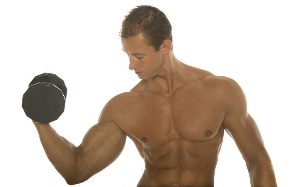 兽王皇妃_人体内有多少块肌肉_人体内器官分布图_人体内藏器官分布图 ...