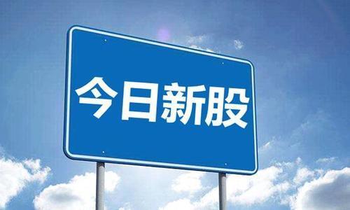 【新股申购网】