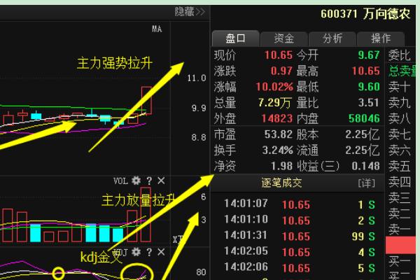 【000998股票】有哪些是粮食股票