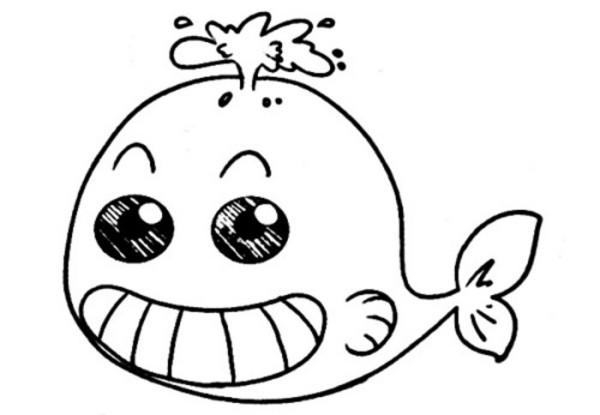 宝宝学画海豚简笔画动物简笔画