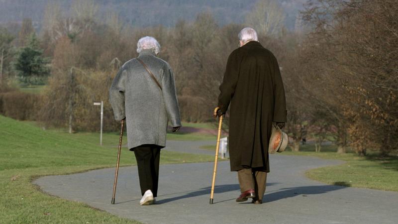 人为什么活的越老胆子越小?