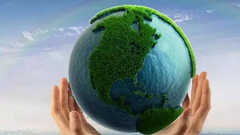 要发展低碳经济,可再生能源是关键