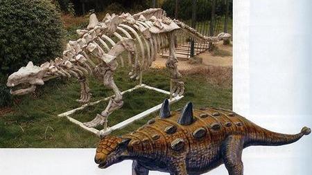 恐龙的学名里居然有汉语拼音,生物命名有哪些玄机?
