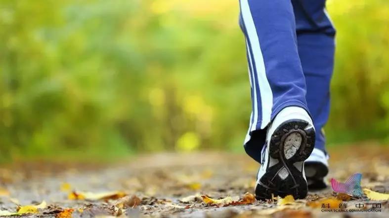 走路防病又抗癌!什么时间走、走多少最好?