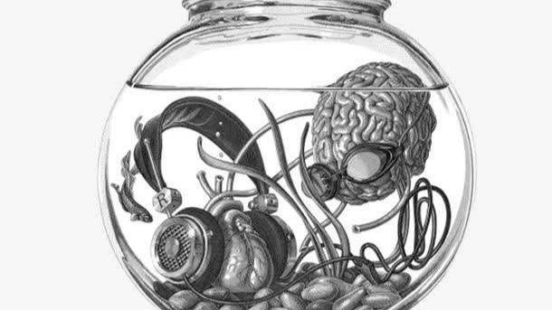 我們的大腦一直浸在玻璃缸里?