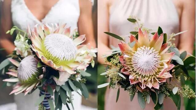 这朵绝美的新娘捧花,却有一个霸气侧漏的名字...的头图