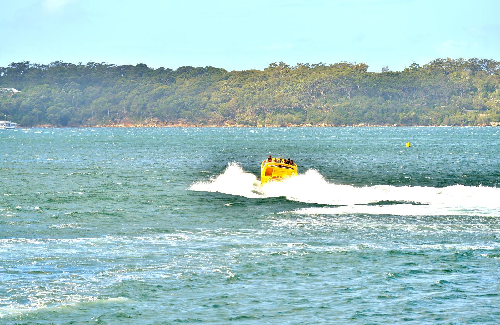澳大利亚旅游攻略图片489