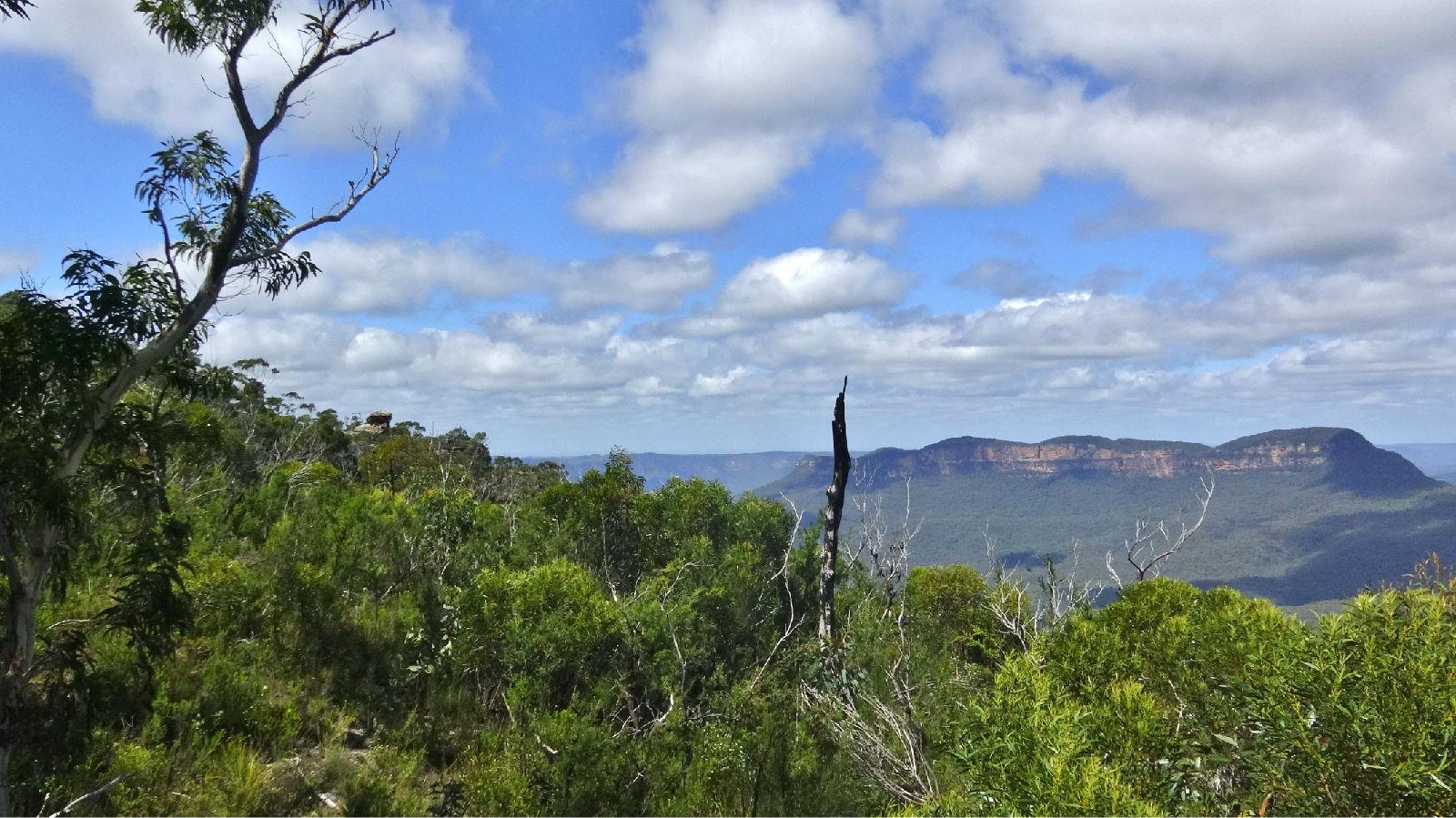 澳大利亚旅游攻略图片406