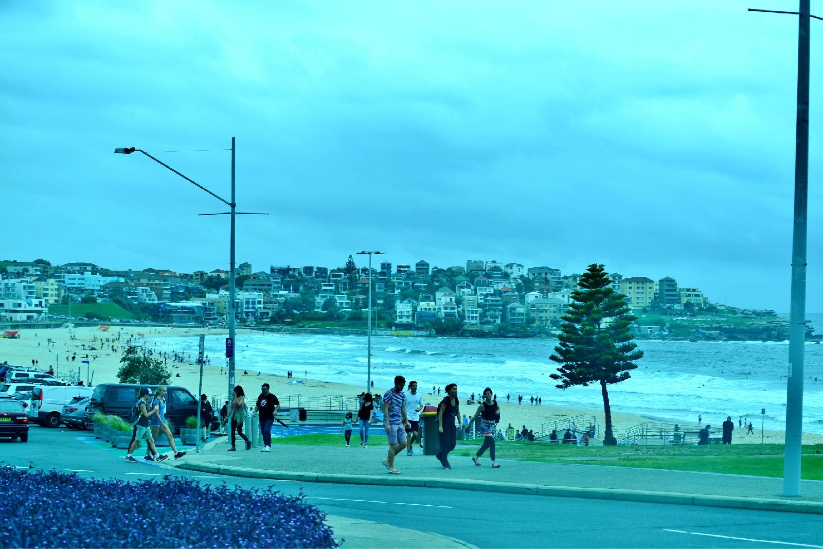 澳大利亚旅游攻略图片297