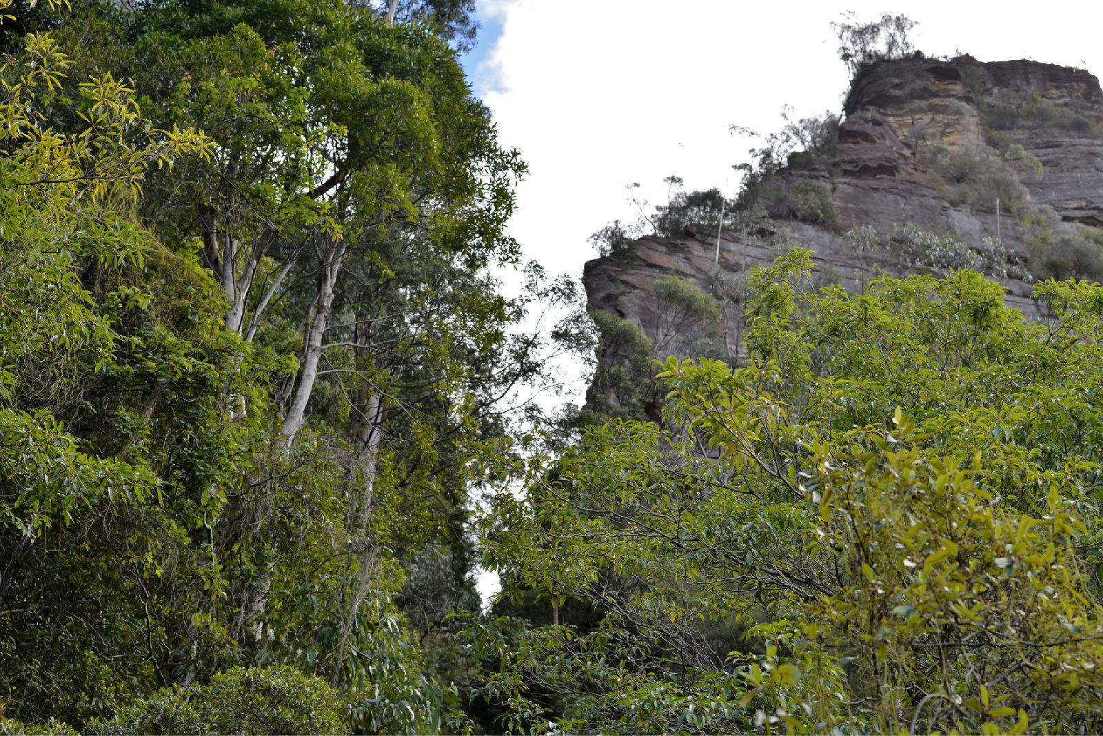 澳大利亚旅游攻略图片422