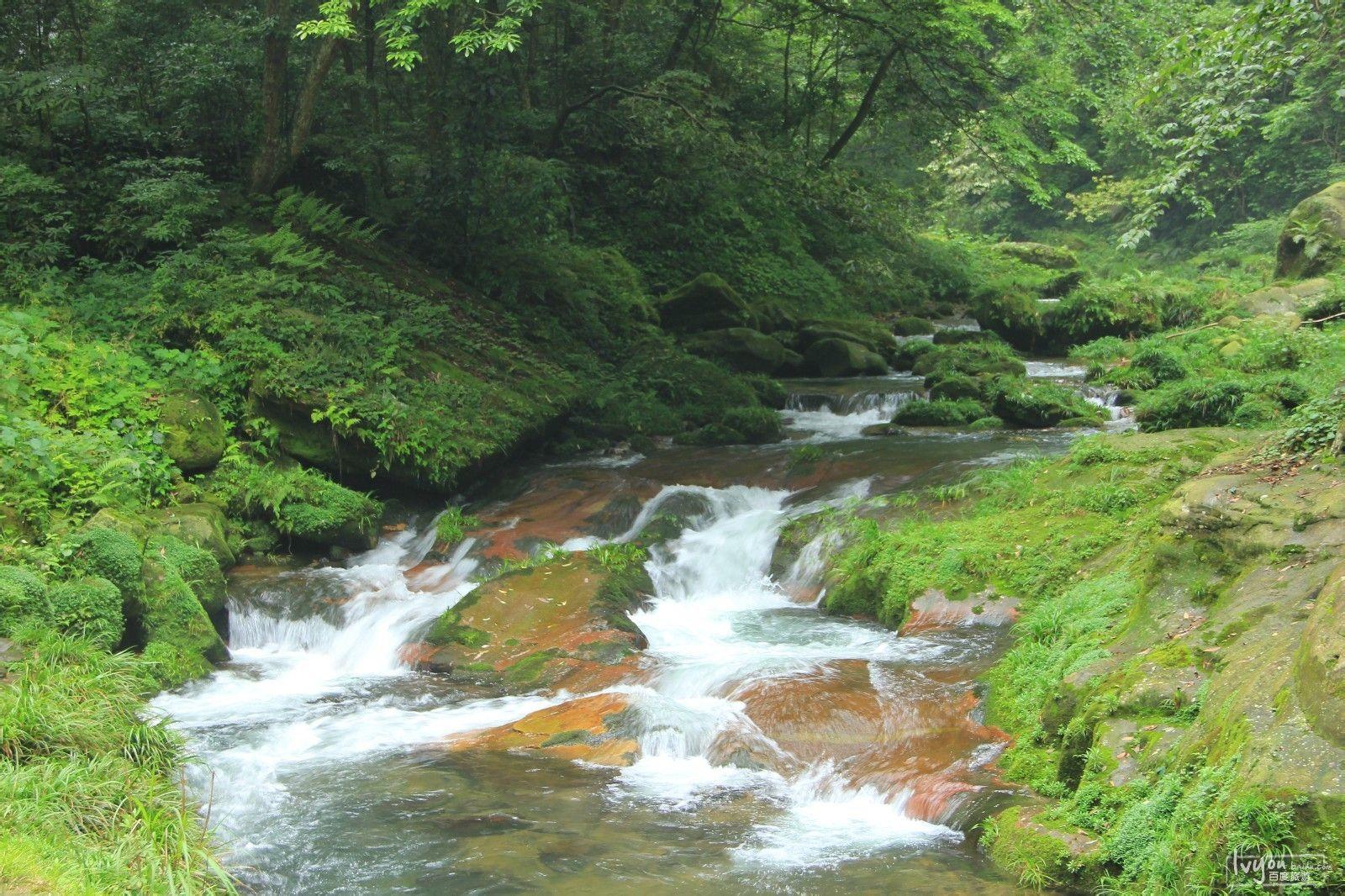 张家界国家森林公园旅游攻略图片41