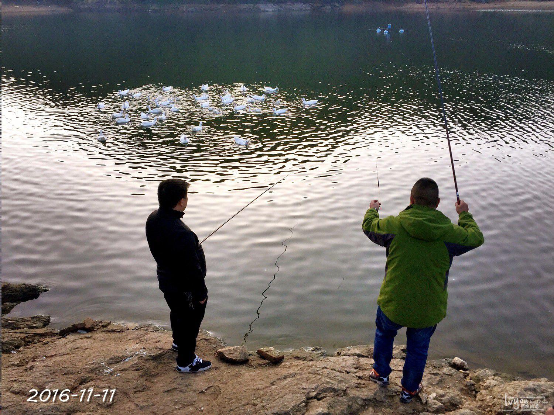 衢州旅游攻略图片121