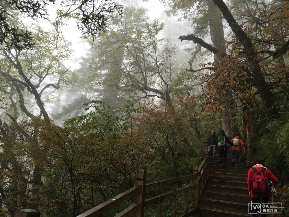 成都旅游攻略图片377