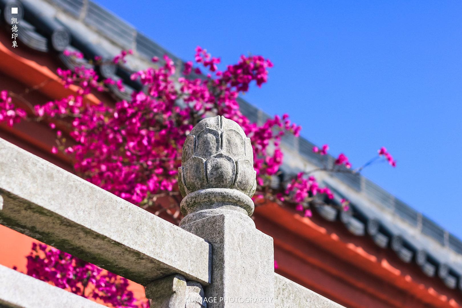 广州旅游攻略图片49