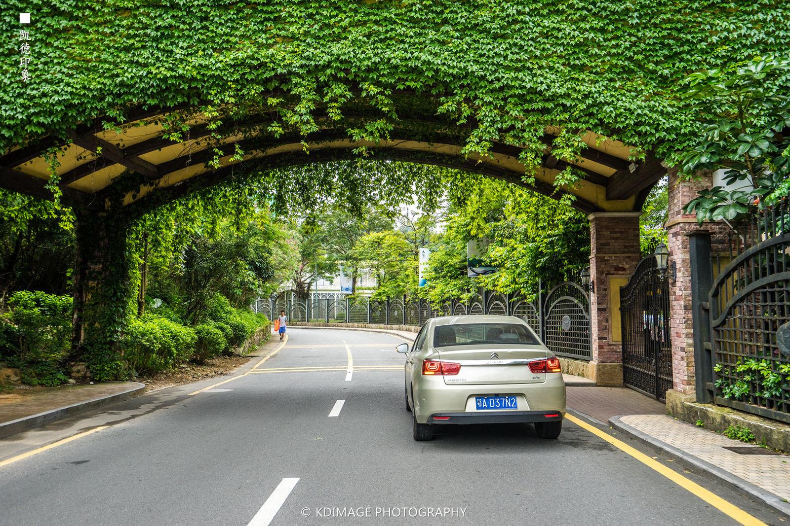 广州旅游攻略图片28