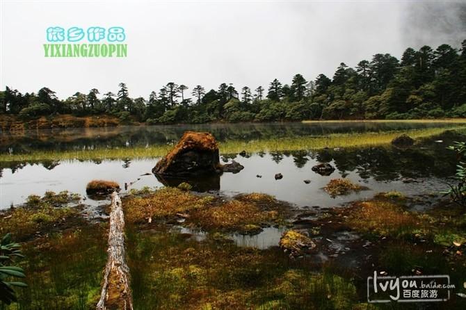 丽江老君山旅游攻略图片10