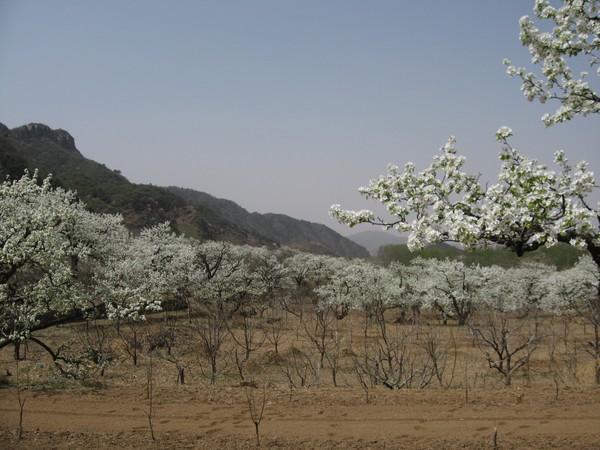 天津蓟县旅游攻略图片19