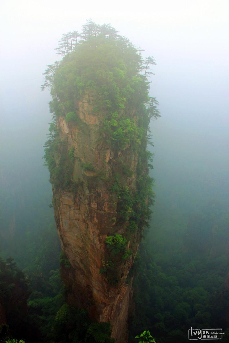 张家界国家森林公园旅游攻略图片25