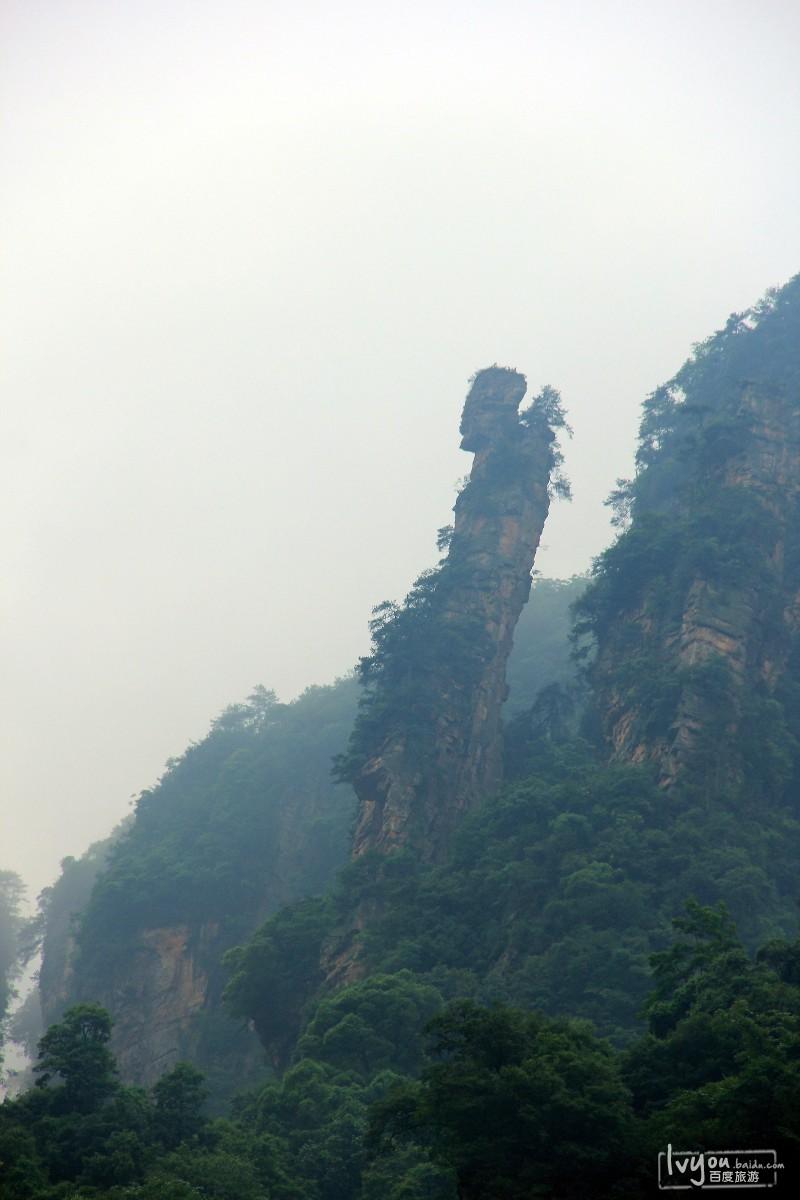 张家界国家森林公园旅游攻略图片48