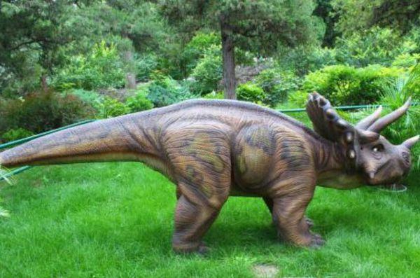 恐龙的资料50字_恐龙大概在多少年前灭亡的??_百度知道