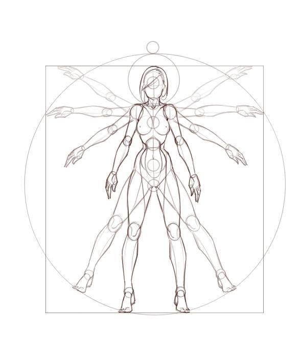 人体bb图_求动漫人体结构图 女生的_百度知道