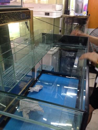 自制魚缸長80cm寬40cm高70cm,上部過濾,請求高手指教,過濾槽需要做圖片