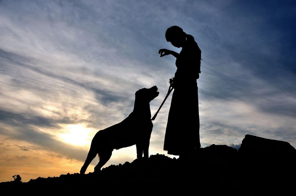 农夫色人和狗_要做画册的封面,需要一些温馨的人和狗的图片.