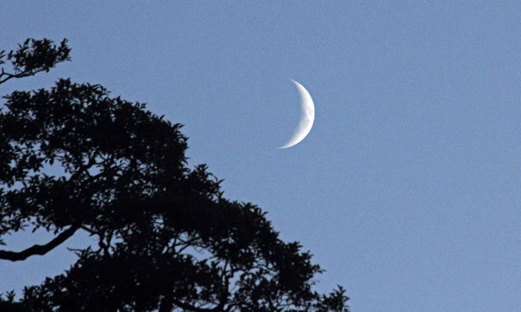 农历6月14_如何区分新月和残月,上弦月和下弦月_百度知道
