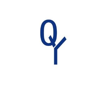 急求logo設計,能人們幫幫忙:字母q和y的組合,感覺要莊重一些,謝謝!