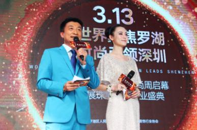 中央電視臺女主持人楊一的具體資料圖片