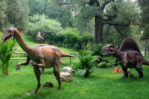 恐龙的资料50字_关于恐龙的资料一百字以内_百度知道