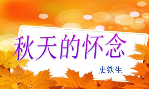 《秋天的怀念》全文
