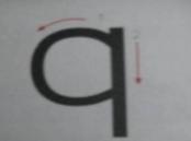 【603101】新疆上市公司有哪些