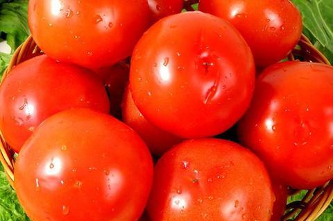 痛风是常有的,但为什么吃西红柿能减轻?