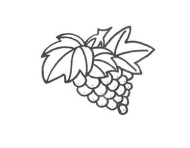 葡萄叶子简笔画