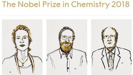 定向進化憑什么拿下2018年諾貝爾化學獎?的頭圖