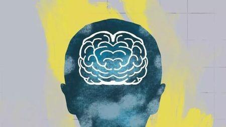大腦是如何發明道德感的?