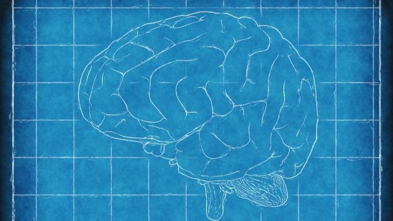 警惕放射治疗造成的脑损伤——放射性脑损伤
